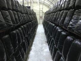 üretim çadırı